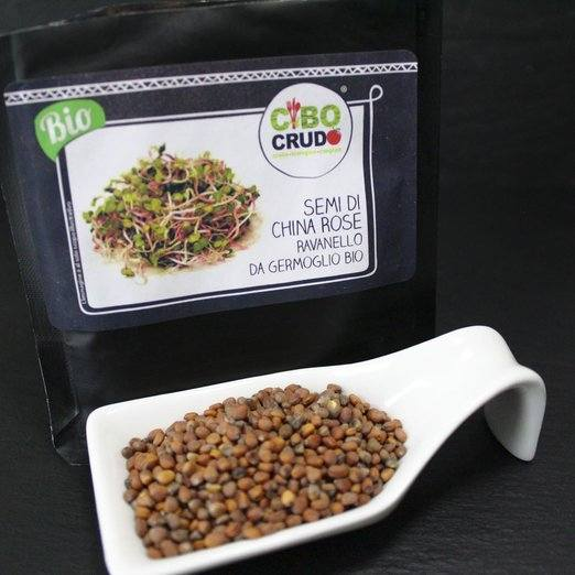 Semi di China Rose da Germoglio 125g